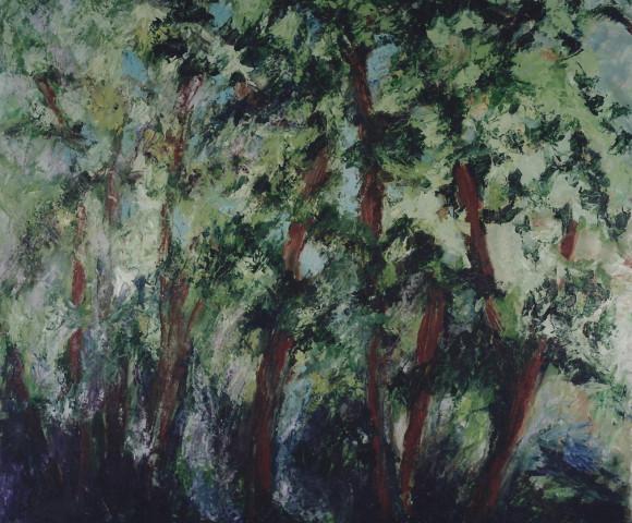 Risveglio, 2002